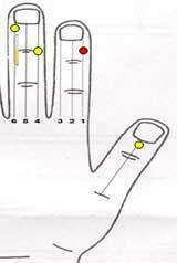 Caída del cabello Tratamiento través Sujok 2 Magnetoterapia  Imán de barra (clavo lateral) Línea nº 6 - Blanco La terapia del color  Línea nº 6 Punto Nº 1 - Amarillo Línea nº 4 Punto nº 3 - Amarillo Línea nº 1 Punto nº 2 - Red Línea mediados del pulgar (Yang lateral) Punto Nº 1 - Amarillo