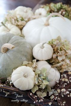 French country cottage, strewn with white pumpkins ~ Autumn vignette Thanksgiving Table Settings, Thanksgiving Decorations, Thanksgiving Games, Seasonal Decor, French Country Cottage, French Country Decorating, Country Cottages, Country Homes, Cottage Style