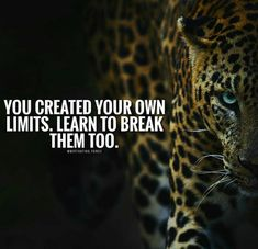 """""""You Created Your Own Limits. Learn To Break Them Too."""""""