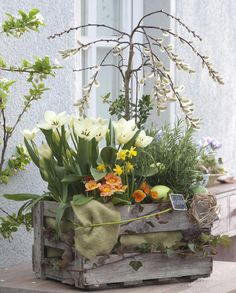 Deko-Ideen fürs Osterfest A particularly refined decoration for Easter: a wine box turns into a mini Easter Garden, Autumn Garden, Moss Garden, Kitchen Ornaments, Bedroom Murals, Deco Floral, Ikebana, Fall Home Decor, Porch Decorating