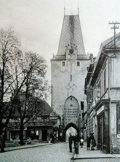 Notre Dame, Building, Travel, Historia, Viajes, Buildings, Trips, Traveling, Tourism