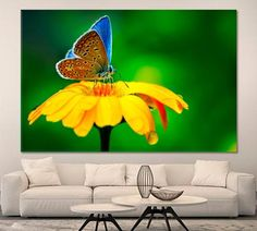 Butterfly Wall Art Blue Butterfly Canvas Print Yellow Flower Artwork Wild Life Poster Print Beautiful Butterfly Art Animal Nature Canvas by ArtWog Butterfly Wall Art, Blue Butterfly, Oversized Wall Art, Life Poster, Thing 1, Flower Artwork, Beautiful Posters, Flower Canvas, Office Wall Decor