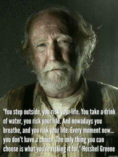 The Walking Dead ~ Hershel Greene