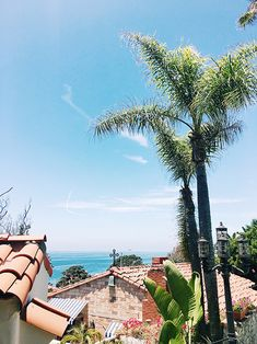 hotel casa laguna in laguna beach california / sfgirlbybay