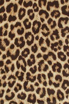 Leopardo pensado para Anita