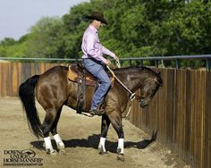 Riding Exercise #15: Sidepass From a Standstill  Goal: For the horse to sidepass from a standstill on the fence when you gently press his side with the calf of your leg. He should keep his entire body in a straight line as he steps sideways.  More about the exercise: https://www.downunderhorsemanship.com/Store/Search/intermediate