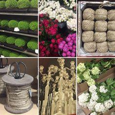 #pallotsflorist #pallotflowers #sthelier #jersey #jerseyci #cheapside #floristsjersey