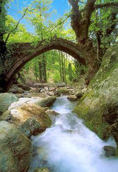 Old stone bridge in Tsagarada, Mount Pelion, Greece Beautiful Places In The World, Places Around The World, The Places Youll Go, Places To See, Around The Worlds, Amazing Places, Meteora Klöster, Myconos, Places In Greece