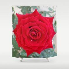 ONE & ONLY YOU Shower Curtain by Annie Koh - $68.00