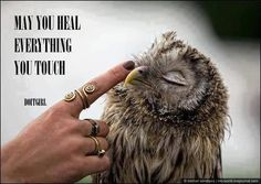 reach out. touch. heal.