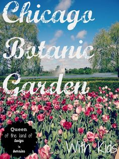 A guide to family friendly and kid focused fun at Chicago's Botanic Garden / www.queenofthelandoftwigsnberries.com