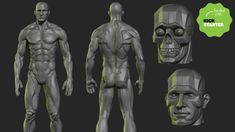 Help me produce an affordable half planar / half realistic male figure. This statue will be great to have as reference.
