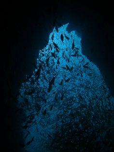 Three Islets - In Through The Outdoor, Mergui Archipelago