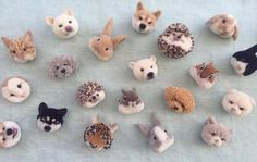 Look At These Amazing Animal Pom-Poms