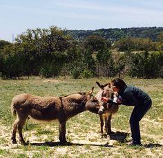 Silver Spur Ranch, Bandera, TX  2014