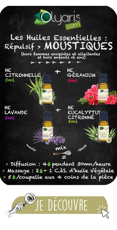 Antiviral Essential Oils: the Complete File by Olyaris Natural Essential Oils, Natural Oils, Beauty Secrets, Diy Beauty, Eucalyptus Citronné, Heath Care, Naturopathy, Green Life, Health And Wellbeing