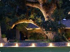 This ranch located in the hills of Medocino County preserved this massive Valley Oak tree by surrounding it with a low wall and sidewalk, further emphasizing its beauty with numerous Louver Brick Star™ fixtures.  Product(s) Used: Louver Brick Star™ Solid State (BKSSL™) Lighting Specifier: d. Best Light Specification Sales RepresentativeAssociated Lighting Representatives, Inc. Photo Credit © Lenny Siegel Photographic  #Lighting #Landscape #Landscaping #Tree #Outdoors