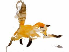 swift fox water color - Google Search