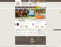 En collaboration avec l'agence UTW-Update, nous avons réalisé la boutique en ligne, Cheval Energy, qui commercialise des produits destinés aux chevaux : compléments alimentaires, soins, matériel vétérinaire, matériel d'écurie...