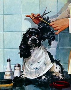 Need this print in my grooming shop