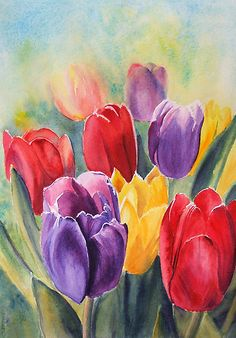 Ruth S Harris Watercolor Painting Tulips Tulip Painting, Painting & Drawing, Painting Metal, Watercolor Flowers, Watercolor Paintings, Art Paintings, Watercolors, Flower Paintings, Drawing Flowers