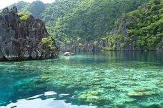 Top 10 Most Attractive Places you Should Visit in Philippines  - If you are an internet guru, you have probably stumbled across several beautiful photos of amazing places on Pinterest and similar websites while surf... -   - Get More at: http://www.pouted.com/top-10-most-attractive-places-you-should-visit-in-philippines/