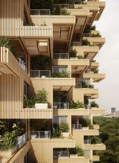 Wood would also clad the building's staggered walls, and trees would grow from the homes' generous balconies.