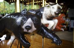 The National Zoo's carousel is among dozens that Carousel Works has installed around the U.S., each made to fit in with its surroundings.