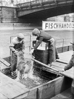 Städtischer Fischmarkt am Donaukanal  Fischhandels-Aktiengesellschaft nächst der Salztorbrücke. 1930 Danzig, Gefilte Fish Recipe, Austro Hungarian, Great Depression, The Uncanny, Dream City, Vienna Austria, Old World, The Past