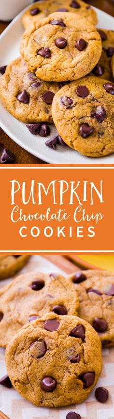 CHEWY NOT CAKEY! Pumpkin Chocolate Chip Cookies-- a chewy pumpkin cookie is hard to come by. This recipe nails it! Recipe on sallysbakingaddiction.com