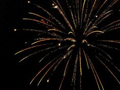 Golden Fireworks 3 by Cynthia Woods