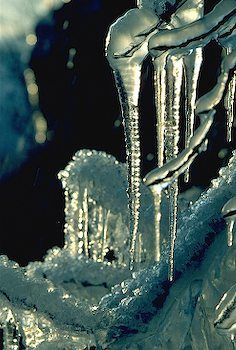 Beautiful Icicles