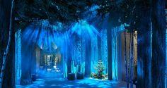 애플 디자인 수장의 크리스마스트리 -테크홀릭 http://techholic.co.kr/archives/63230