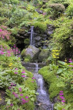 Bodnant Garden ~ Snowdonia, Wales I have been here and it is beautiful with the sound of water all around. Snowdonia, Beautiful Landscapes, Beautiful Gardens, Amazing Gardens, Parks, Beautiful Places, Beautiful Pictures, Beautiful Gorgeous, Water Garden