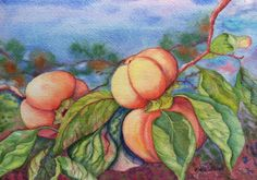 Persimmons - the sweets of nature. Original watercolor painting by E. Kuldaeva