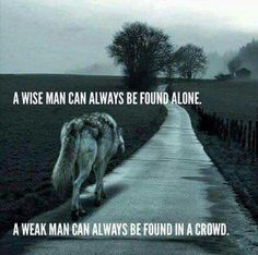 Wolf Quotes - A wise man can always be found alone. A weak man can always be found in a crowd. Motivacional Quotes, Great Quotes, Inspirational Quotes, Quotes Images, Loner Quotes, Dumb Quotes, Sad Sayings, Loyalty Quotes, Lone Wolf Quotes