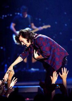 Harry omg he's so perf