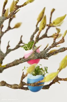 Spring / Easter Styling - via Happy Serendipity
