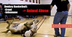 TEACHING KIDS TO MOCK AND ABUSE ANIMALS IN USA - SHUT THIS ABUSE DOWN NOW - SIGN Cancel CRUEL Donkey Basketball Shows!