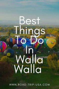 20 fun things you can only do in Walla Walla. #wallawalla #washington #usa #travel Family Road Trips, Road Trip Usa, Honeymoon Tips, Walla Walla, Travel Guides, Travel Tips, Plan Your Trip, Amazing Destinations, Travel Around The World
