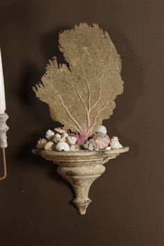 An antique bracket with  a sea fan and pops of pink.  We have done something similar in creating a niche shelf in our marble bathroom wall; then placing sea fans, coral , & shells in there.