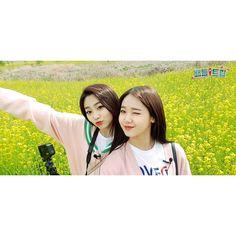 Yoojung & Mina (gugudan) Choi Yoojung, Love K, Ioi, Kpop Groups, Produce 101, Korean, Korean Language