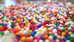 Rainbow Nonpareils Photograph by writemeg.