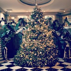 Kardashian Christmas Tree