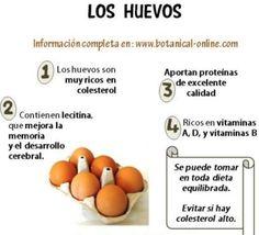 los beneficios de los huevos