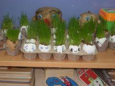 Yumurta kabuklarında çim deneyi yaptık.Talaş ve toprağı katıştıpıp çim tohumu ektik .Suladıkça yeşerdi saçlarımız çıktı:))