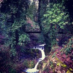 Forest River, Cool Places To Visit, Bridges, The Good Place, Greece, Waterfall, Landscapes, Hotels, Country Roads
