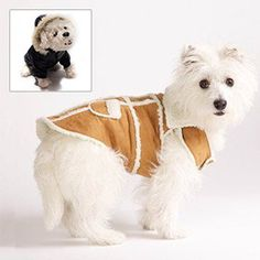 Dog Couture Trendy Jackets in Faux Suede & Leather