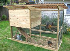 Small Chicken Co-op Ideas