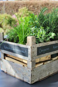 Urban Jungle Bloggers – Eine grüne Kiste zu Ostern